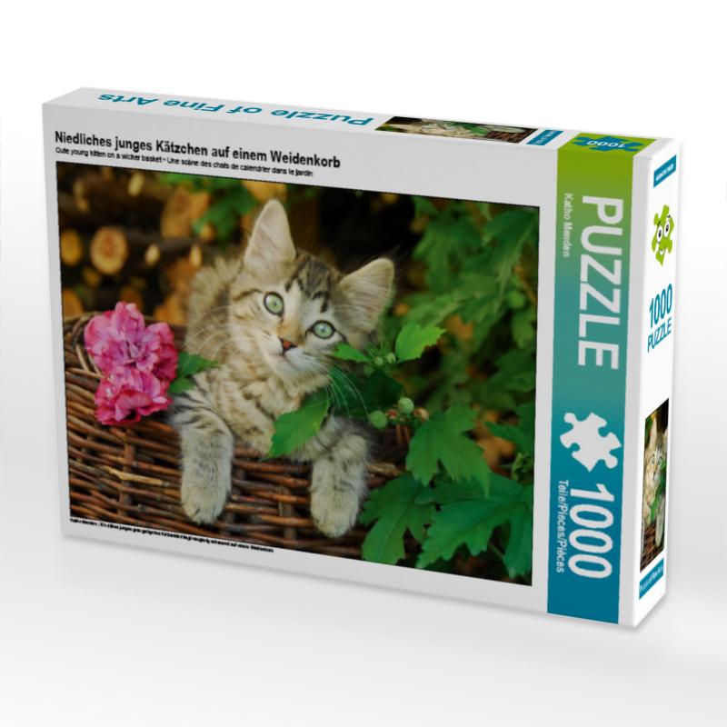 Puzzle Katze Kätzchen